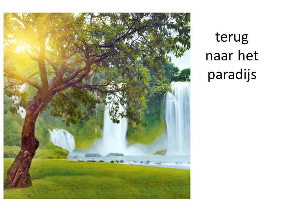 terug naar het paradijs