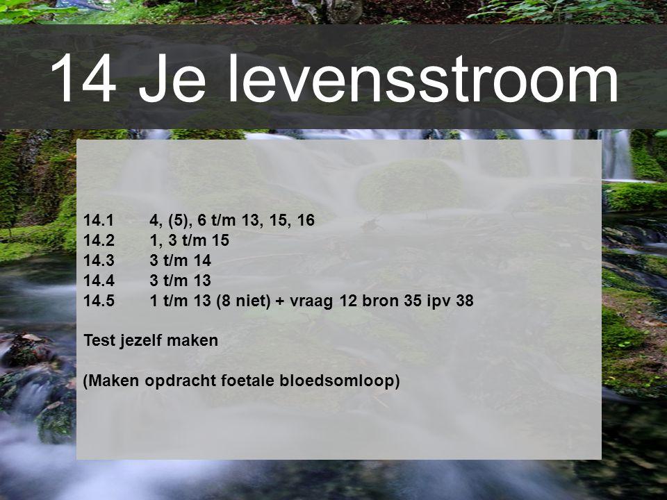 14 Je levensstroom 14.1 4, (5), 6 t/m 13, 15, 16 14.2 1, 3 t/m 15
