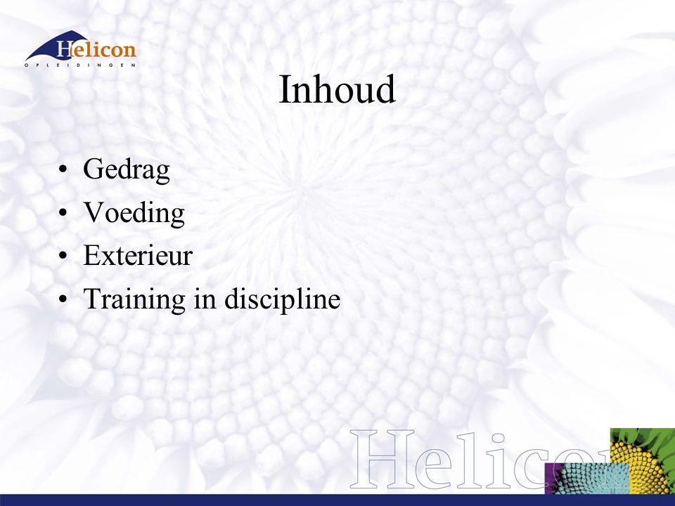 Inhoud Gedrag Voeding Exterieur Training in discipline