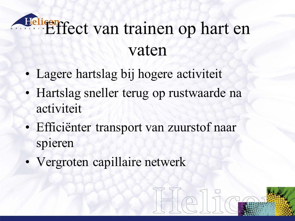 Effect van trainen op hart en vaten