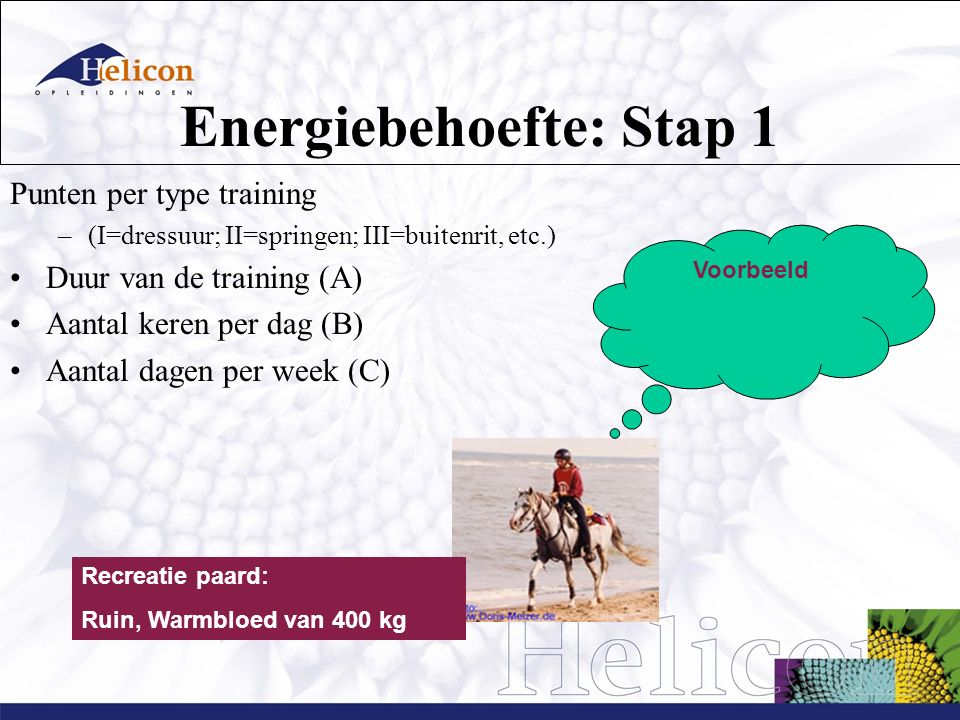 Energiebehoefte: Stap 1
