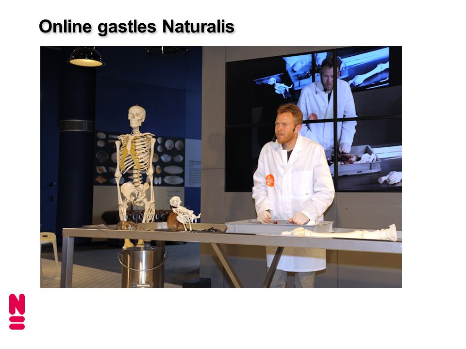 Online gastles Naturalis