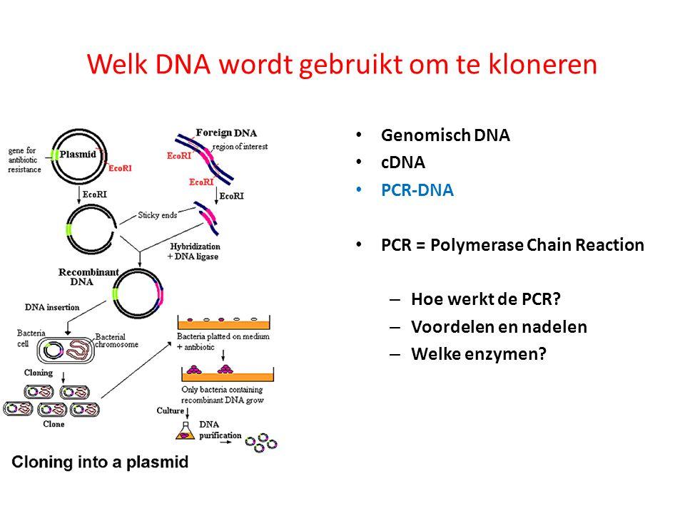 Welk DNA wordt gebruikt om te kloneren