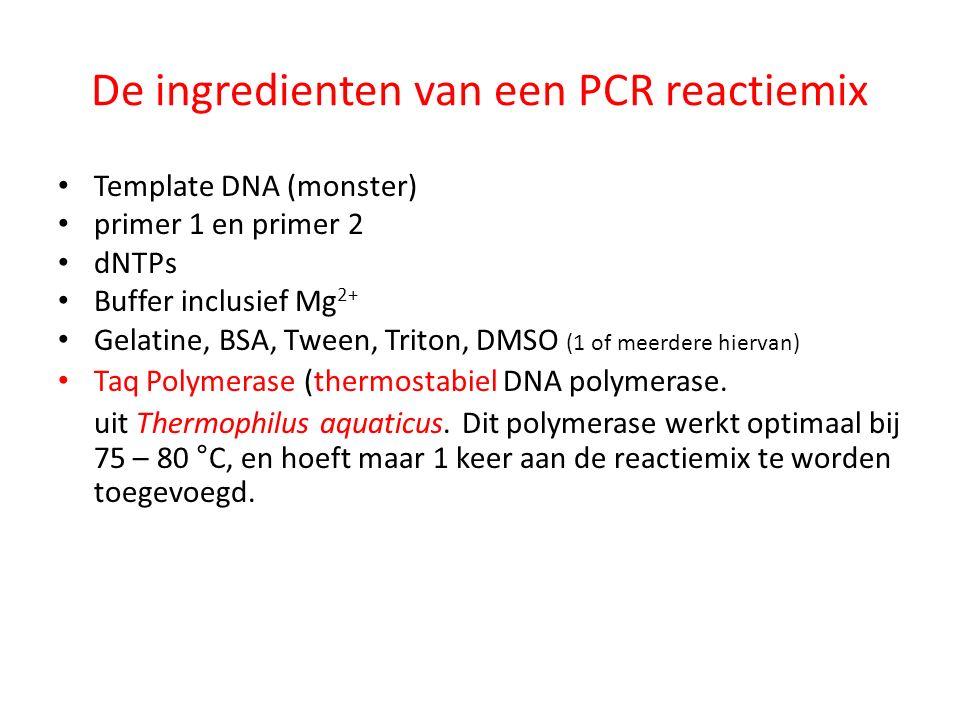 De ingredienten van een PCR reactiemix
