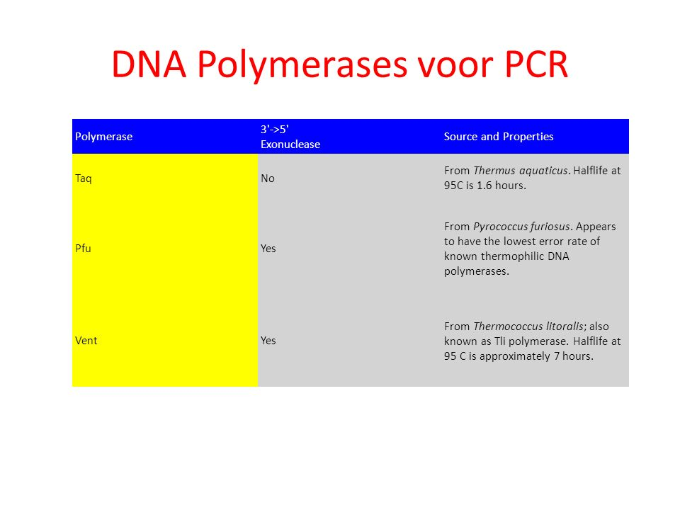 DNA Polymerases voor PCR