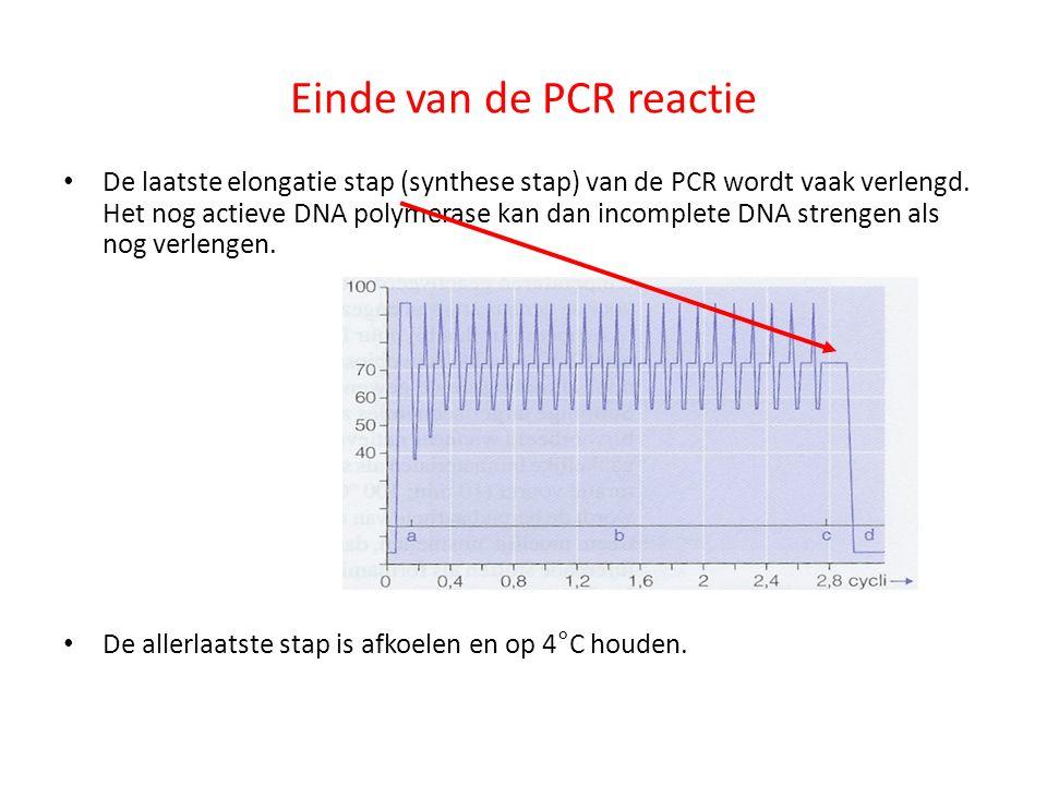 Einde van de PCR reactie