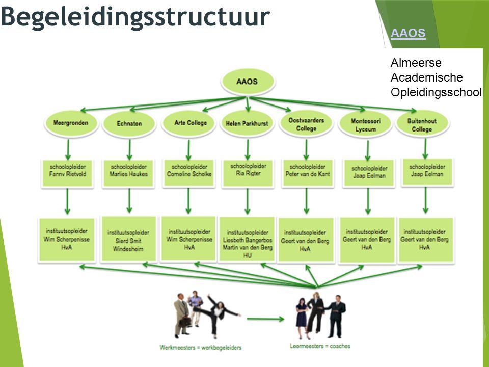 Begeleidingsstructuur