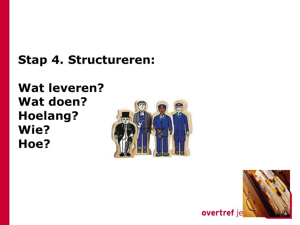 Stap 4. Structureren: Wat leveren Wat doen Hoelang Wie Hoe