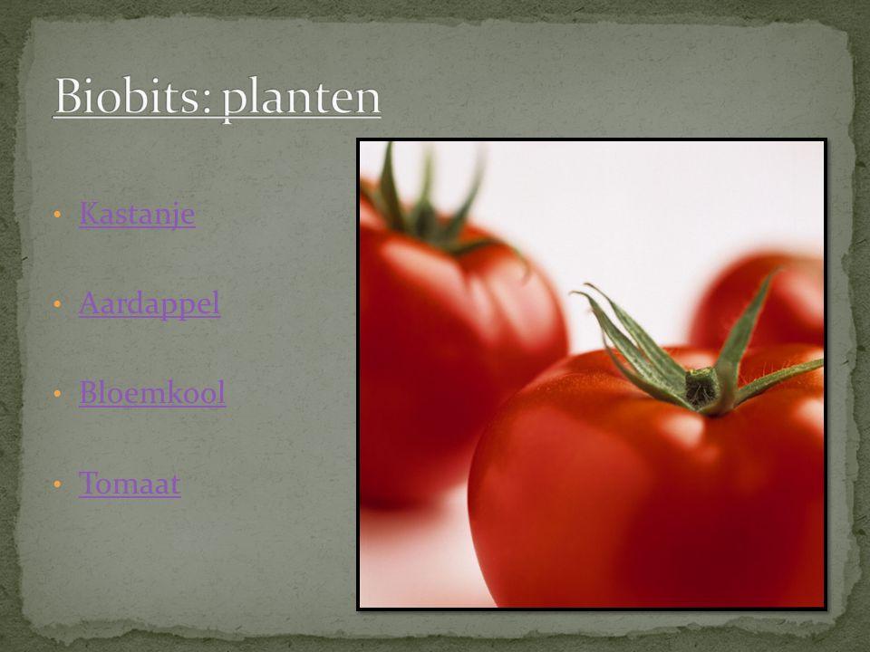 Biobits: planten Kastanje Aardappel Bloemkool Tomaat