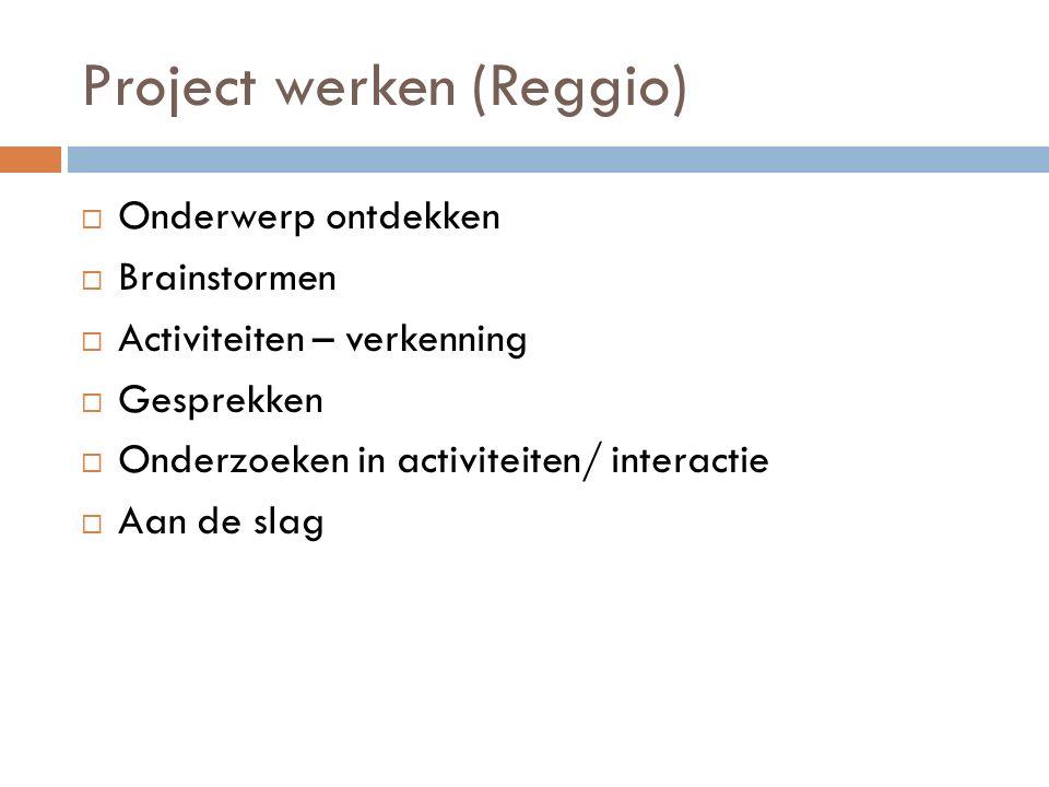 Project werken (Reggio)