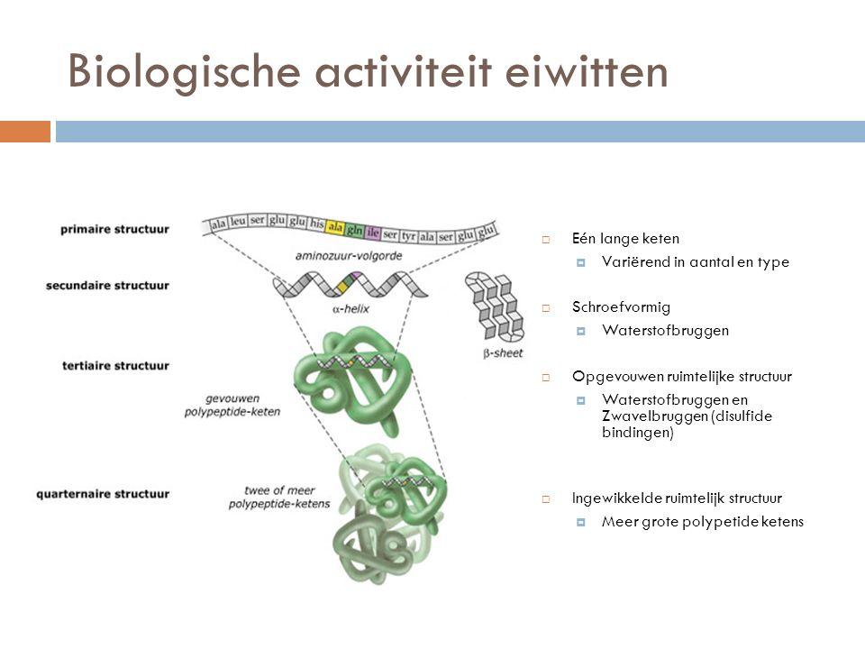 Biologische activiteit eiwitten