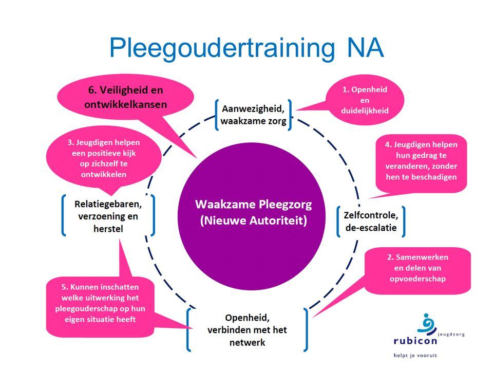 Pleegoudertraining NA