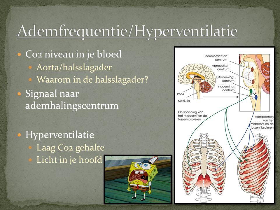 Ademfrequentie/Hyperventilatie