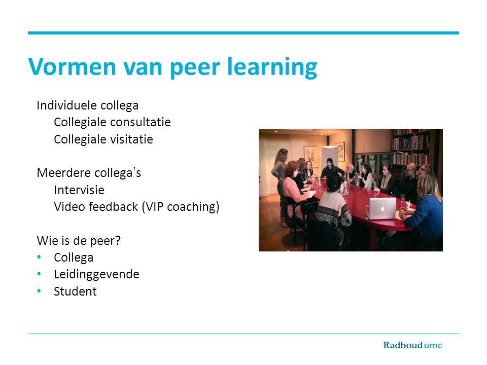 Vormen van peer learning