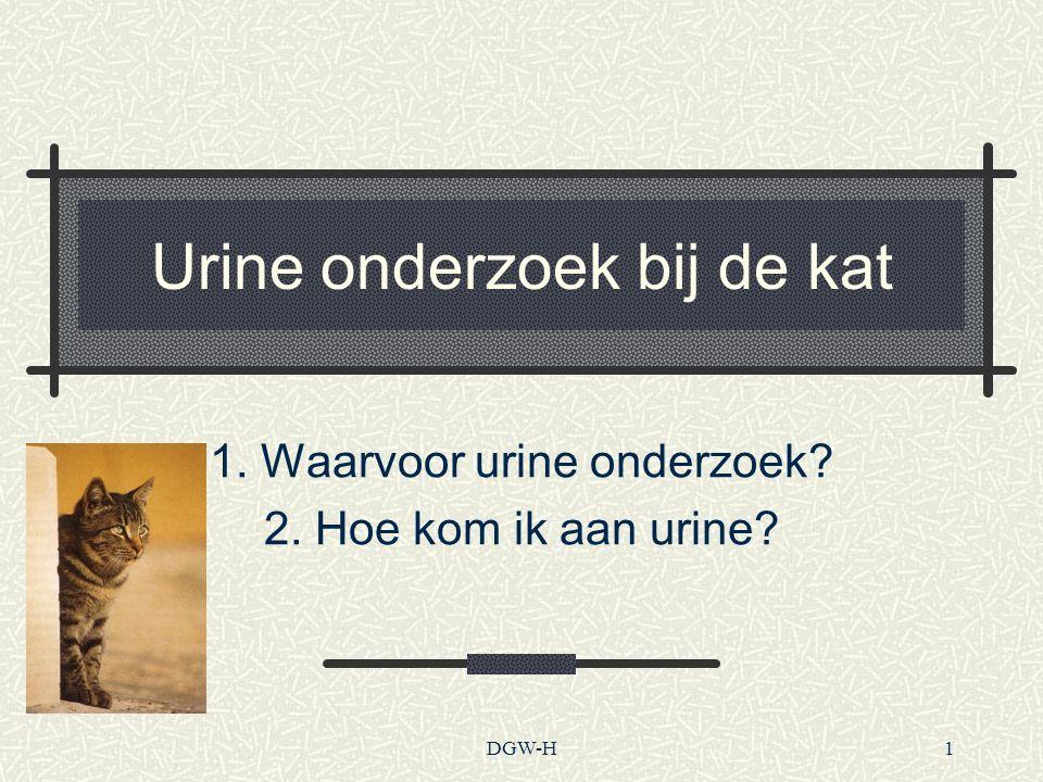 Urine onderzoek bij de kat