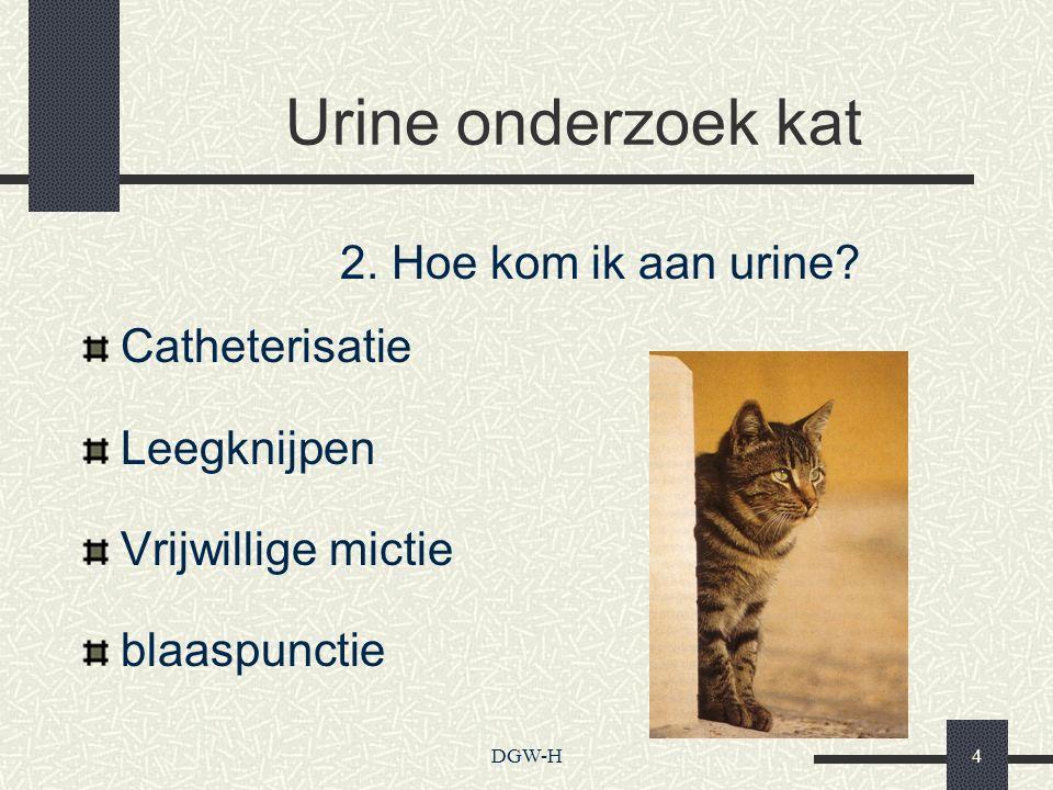 Urine onderzoek kat 2. Hoe kom ik aan urine Catheterisatie