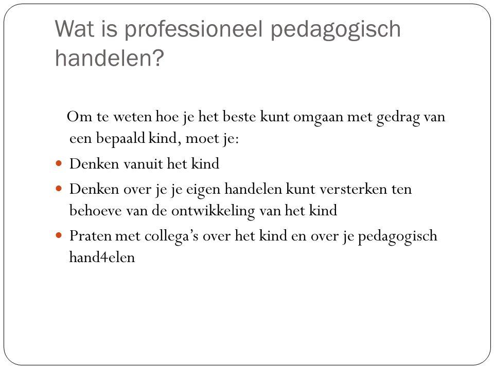 Wat is professioneel pedagogisch handelen
