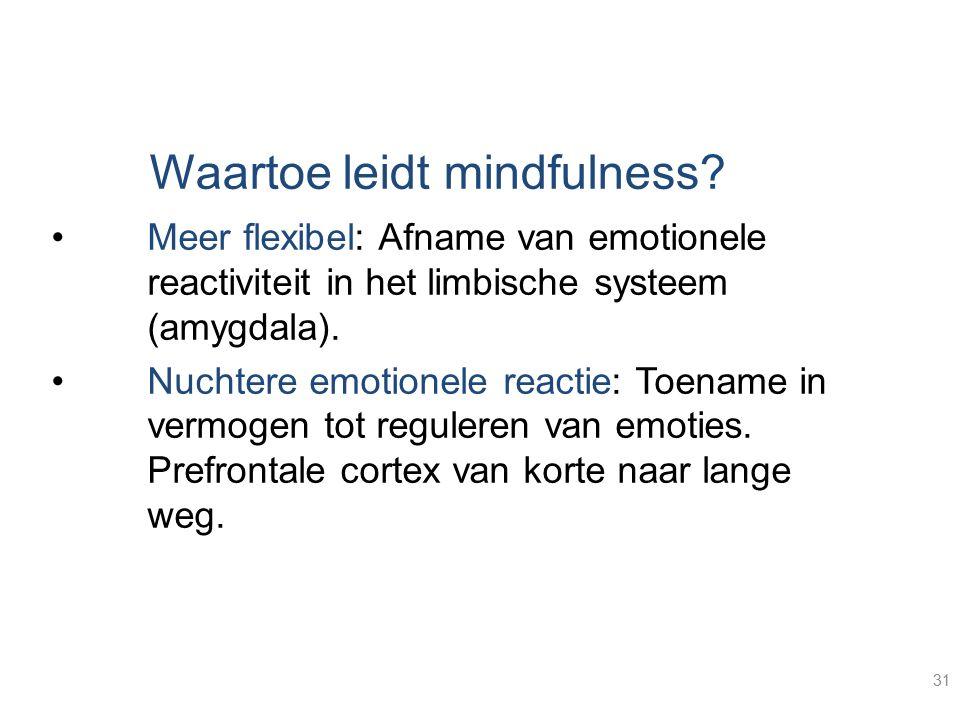 Waartoe leidt mindfulness