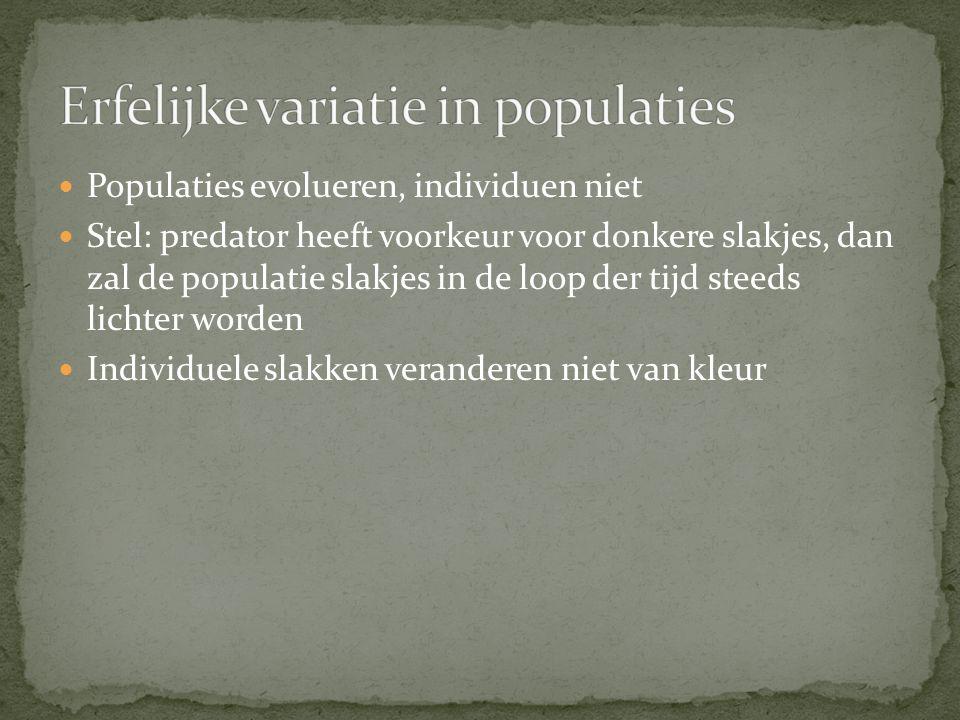 Erfelijke variatie in populaties