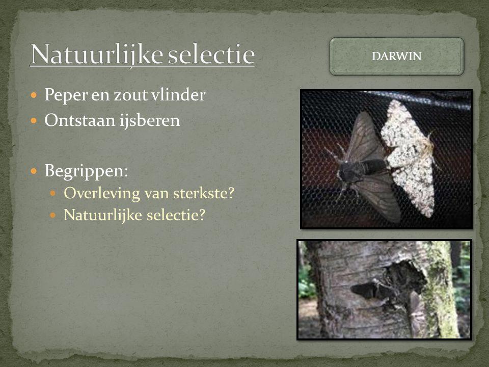 Natuurlijke selectie Peper en zout vlinder Ontstaan ijsberen