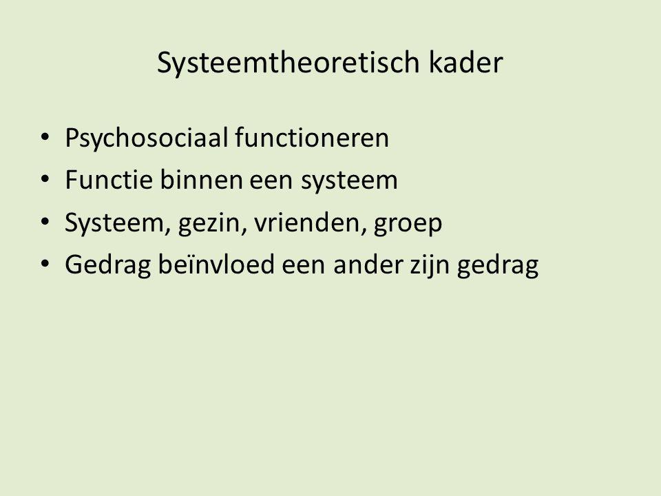 Systeemtheoretisch kader