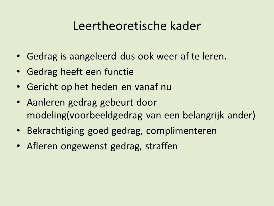 Leertheoretische kader