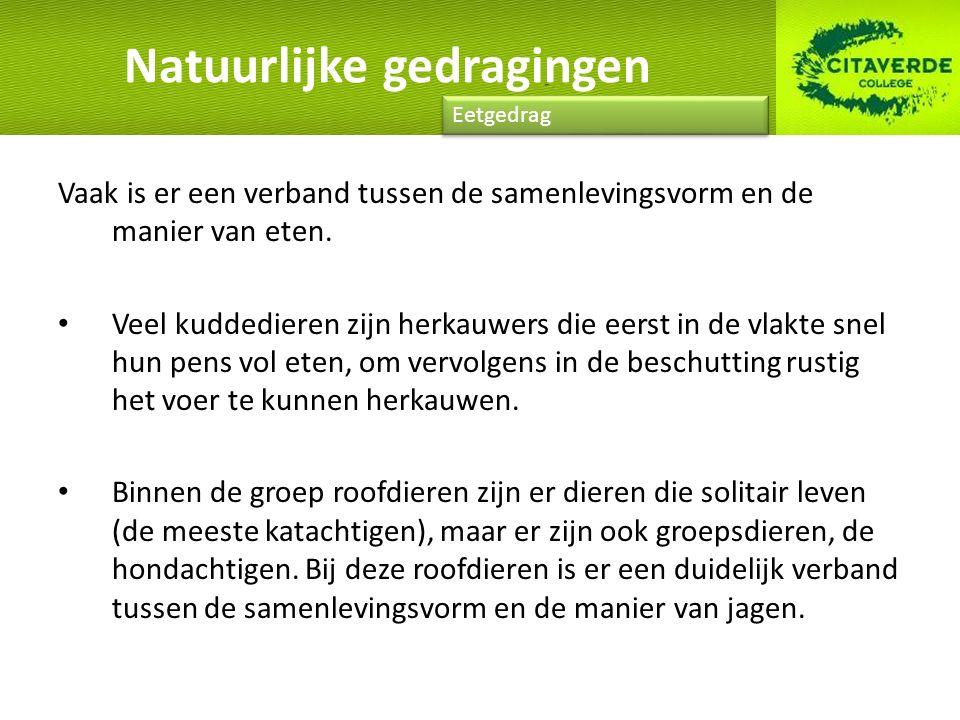 Natuurlijke gedragingen