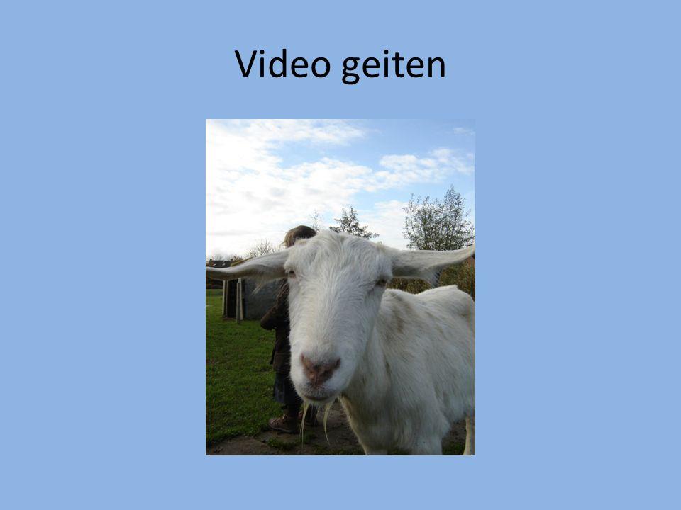 Video geiten