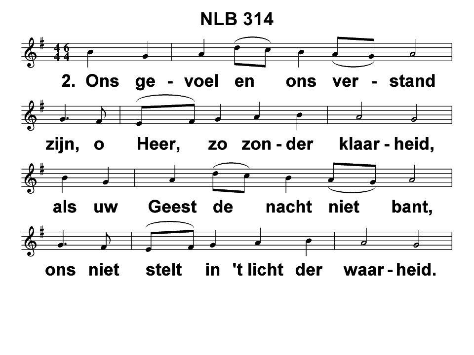 NLB 314