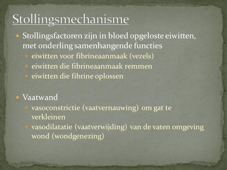 Stollingsmechanisme Stollingsfactoren zijn in bloed opgeloste eiwitten, met onderling samenhangende functies.