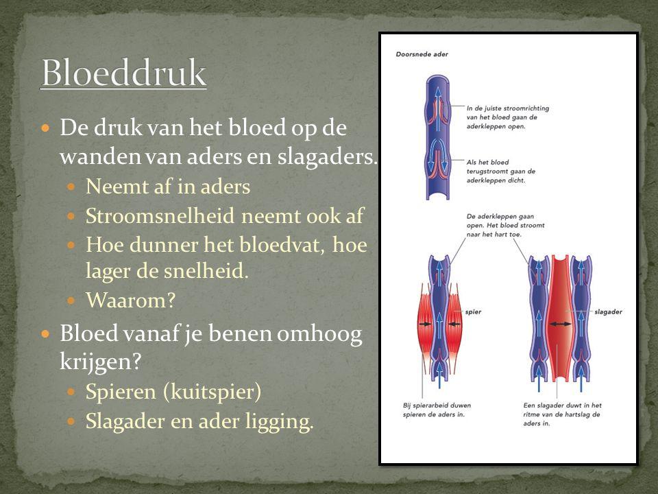Bloeddruk De druk van het bloed op de wanden van aders en slagaders.
