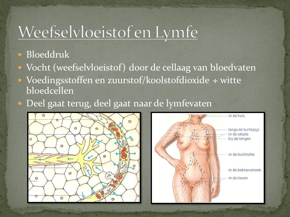 Weefselvloeistof en Lymfe