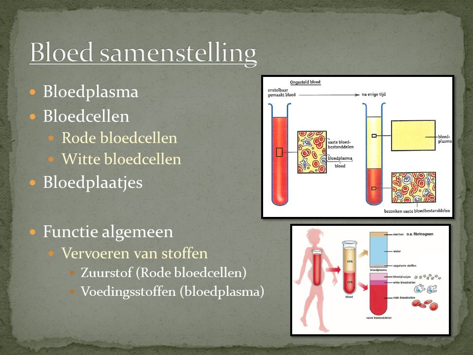 Bloed samenstelling Bloedplasma Bloedcellen Bloedplaatjes