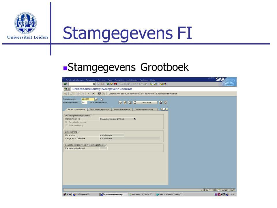 Stamgegevens FI Stamgegevens Grootboek