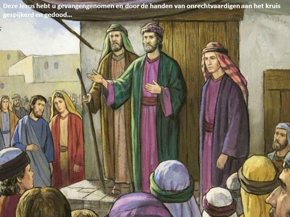 Deze Jezus hebt u gevangengenomen en door de handen van onrechtvaardigen aan het kruis gespijkerd en gedood…