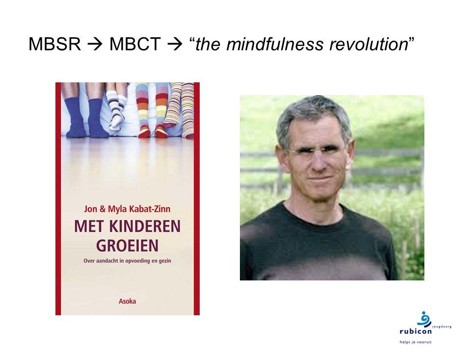 MBSR  MBCT  the mindfulness revolution