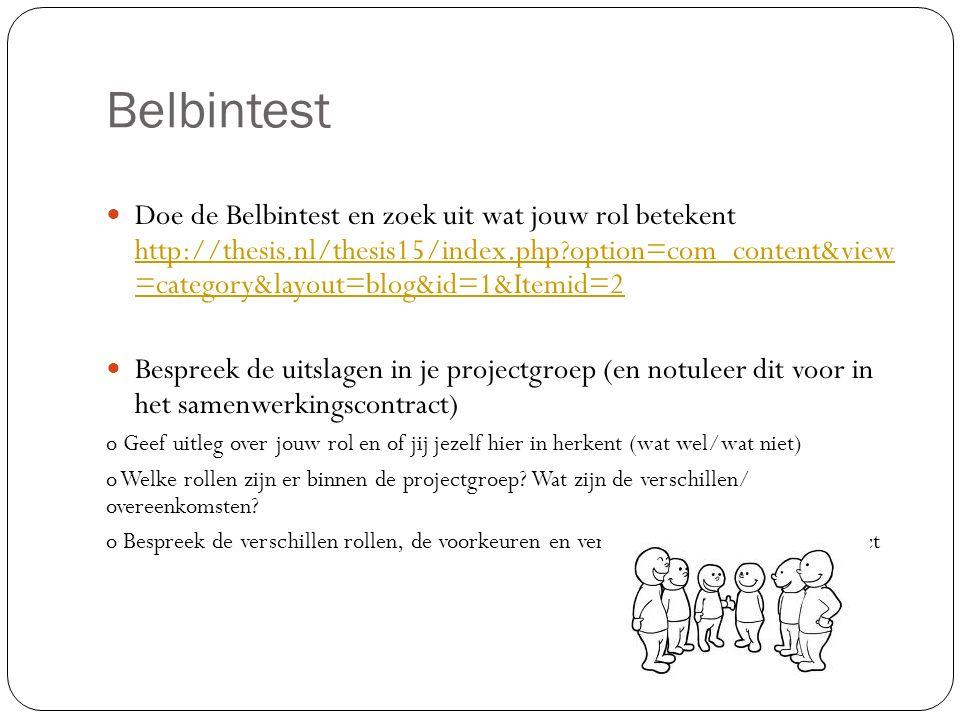 Belbintest
