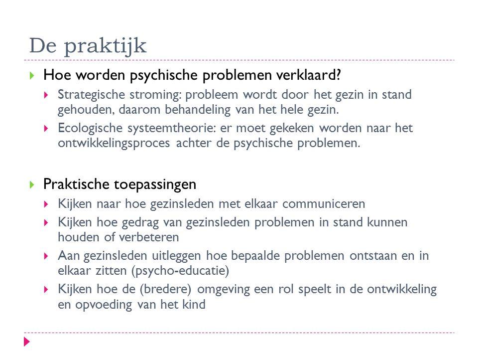 De praktijk Hoe worden psychische problemen verklaard