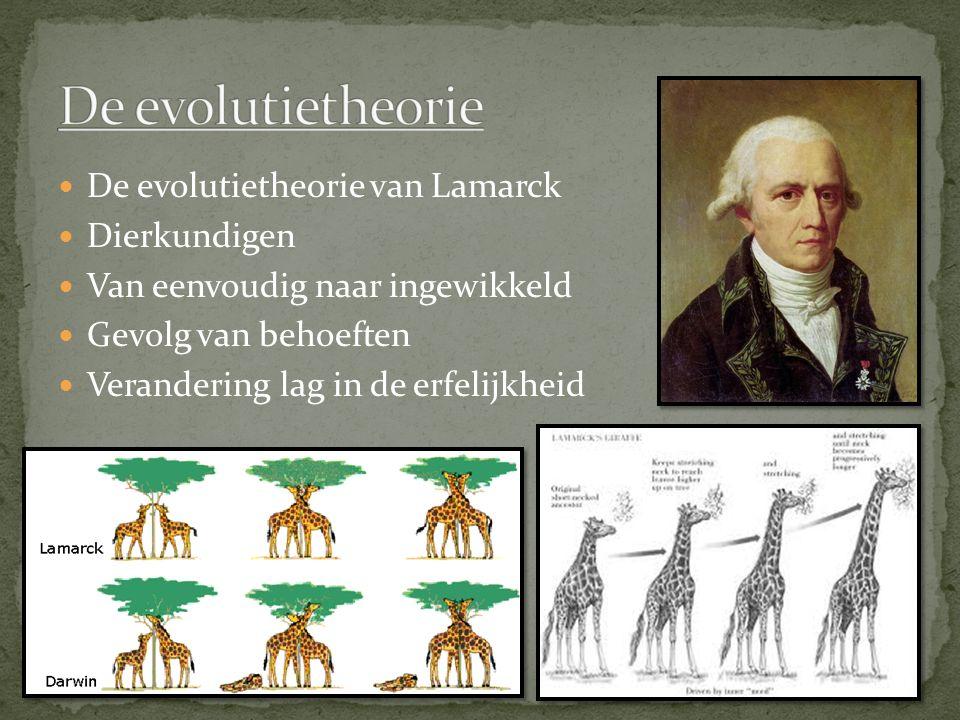 De evolutietheorie De evolutietheorie van Lamarck Dierkundigen