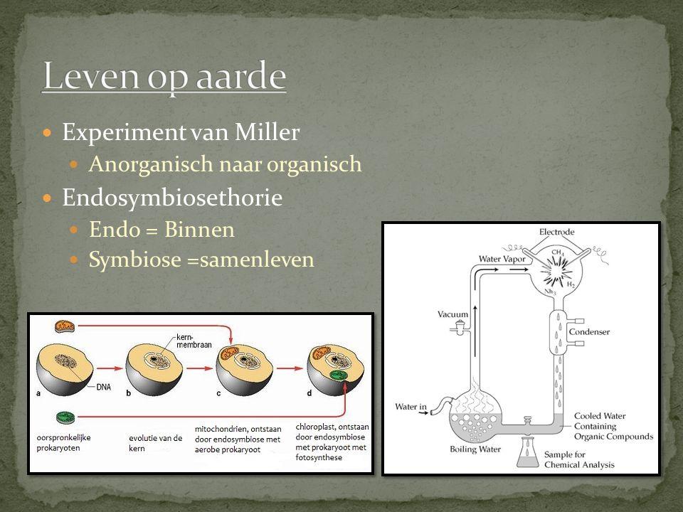 Leven op aarde Experiment van Miller Endosymbiosethorie