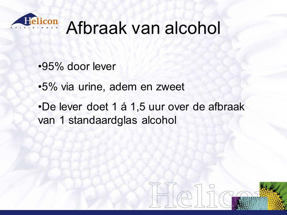 Afbraak van alcohol 95% door lever 5% via urine, adem en zweet
