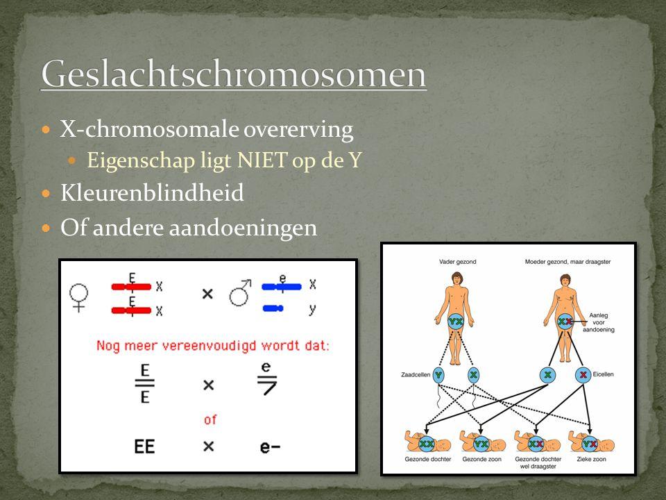 Geslachtschromosomen