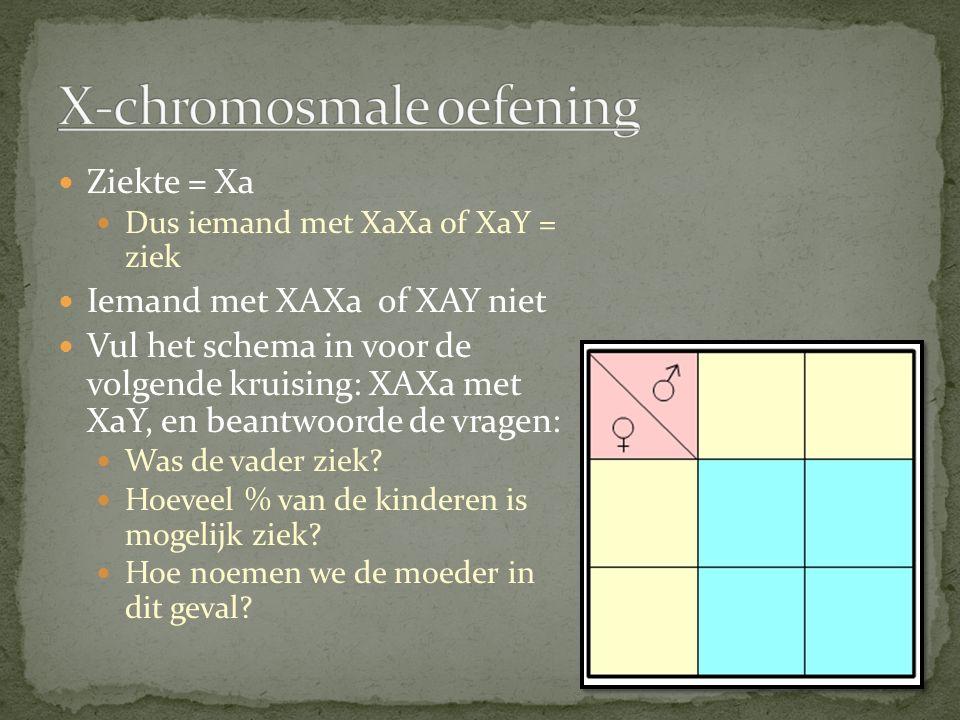 X-chromosmale oefening