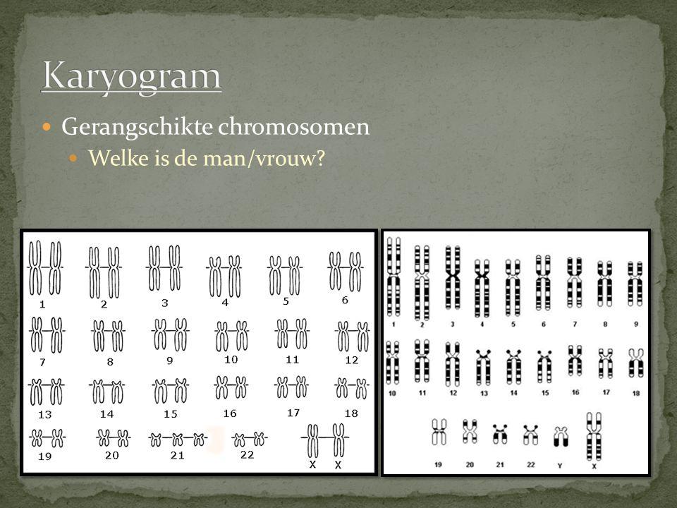 Karyogram Gerangschikte chromosomen Welke is de man/vrouw