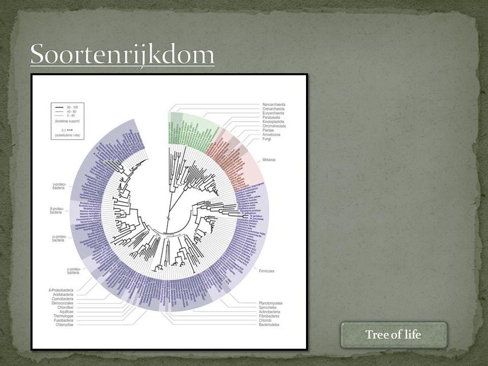 Soortenrijkdom Tree of life