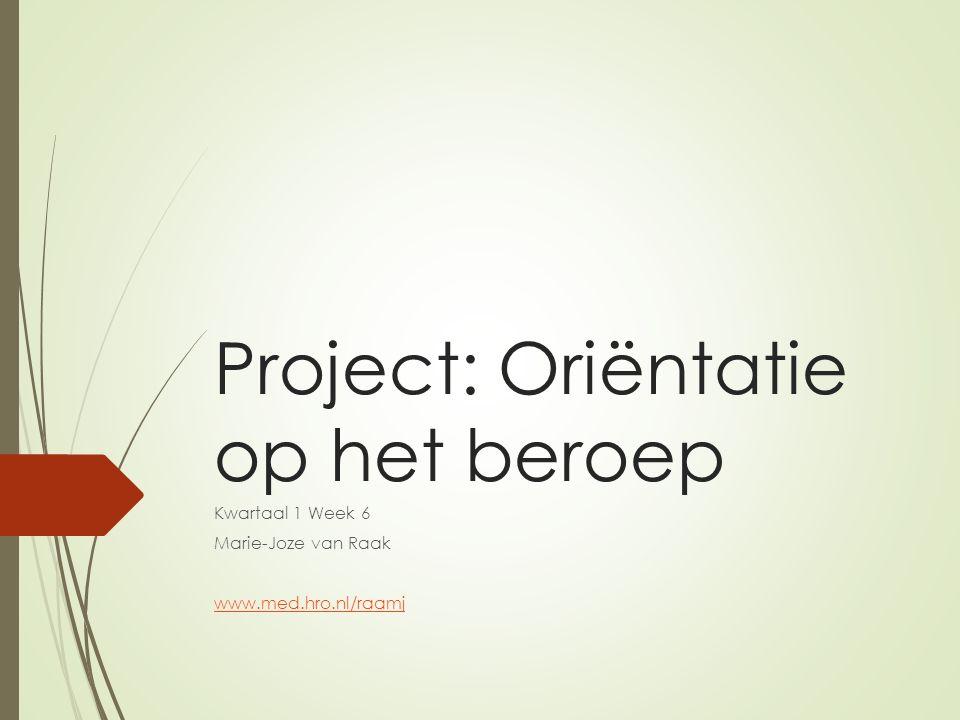 Project: Oriëntatie op het beroep