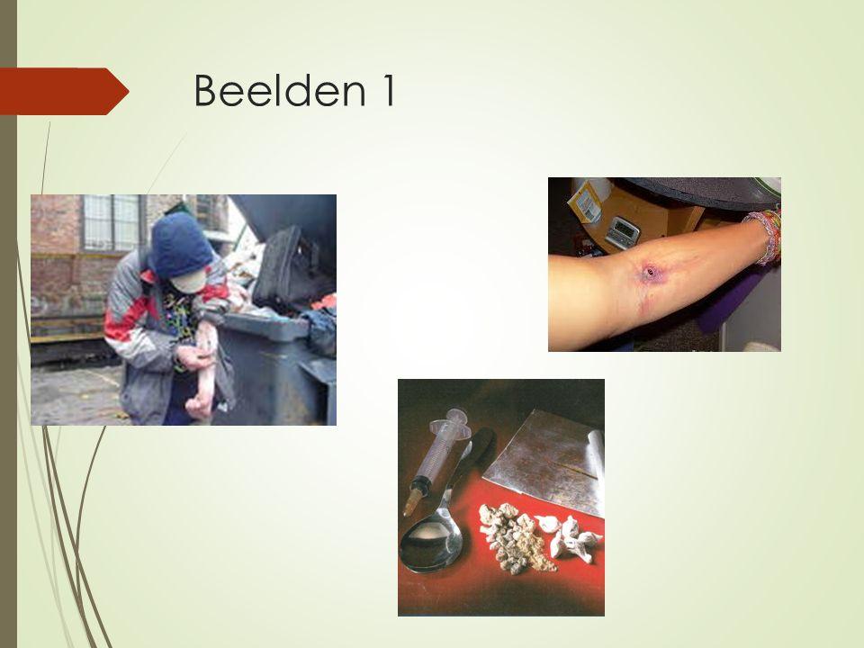 Beelden 1