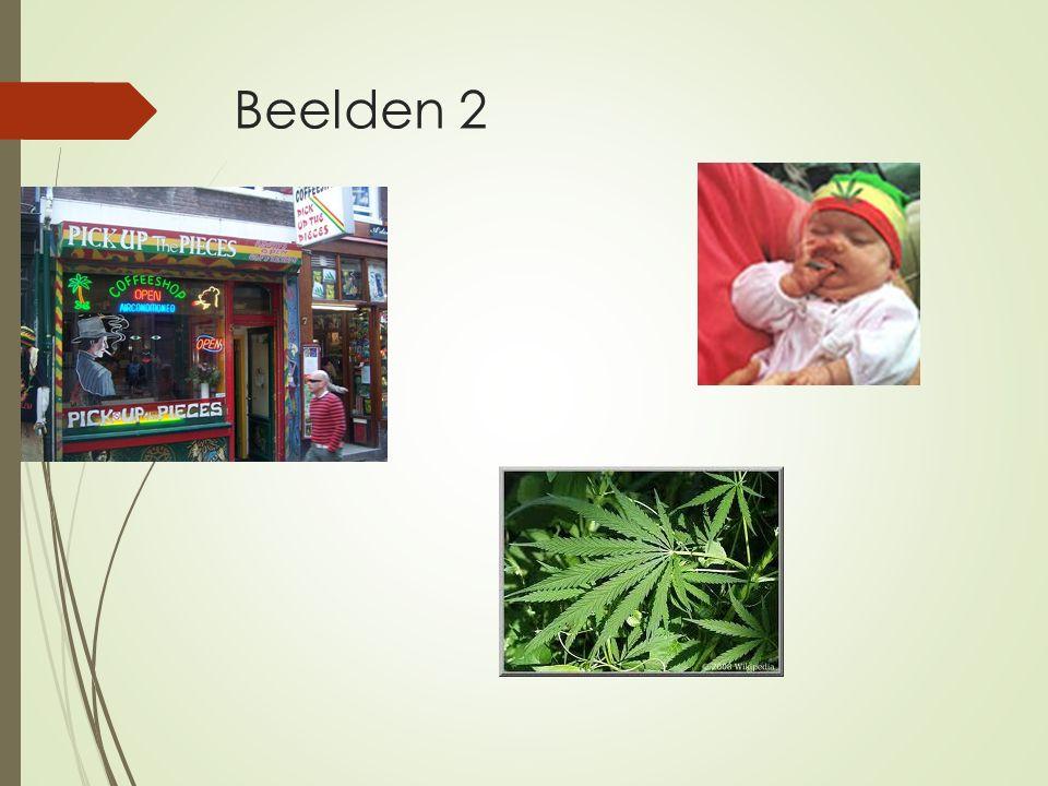 Beelden 2