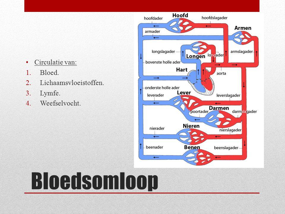 Bloedsomloop Circulatie van: Bloed. Lichaamsvloeistoffen. Lymfe.