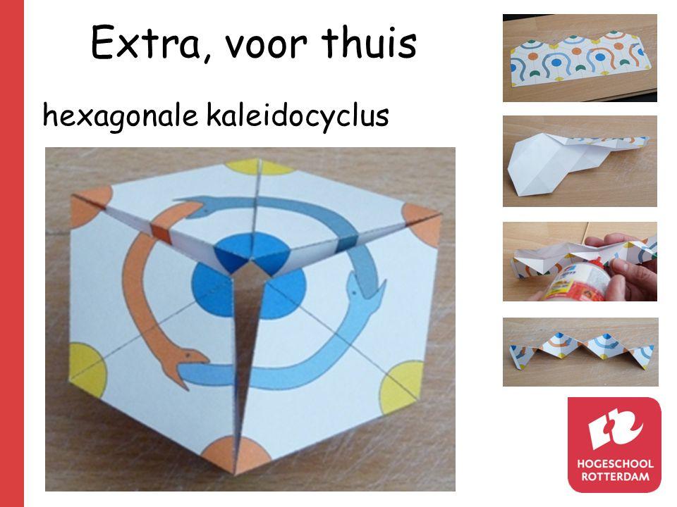 5. Extra, voor thuis hexagonale kaleidocyclus